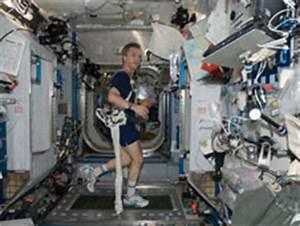 NASA - Astronauts Test Glenn Exercise Harnesses