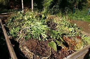 Dekorative Bäume Für Kleine Gärten : permakultur auch f r kleine g rten ploberger ~ Markanthonyermac.com Haus und Dekorationen