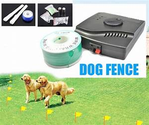 Gaisernoreen esky waterproof electronic fence dog shock for Dog shock collar fence