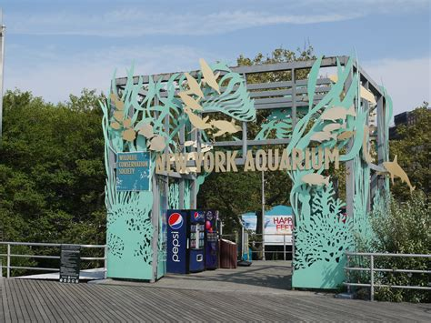 new york aquarium thirty walks in