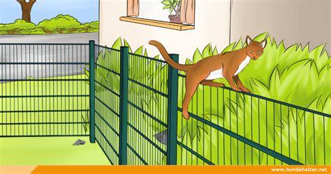 Gartenzaun Für Hunde