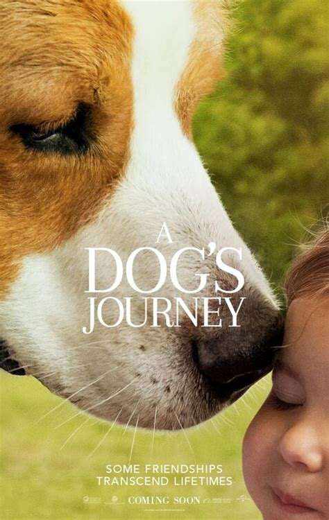 dogs journey  poster    imp awards