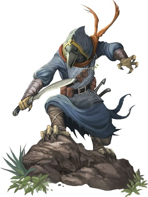 rogue tengu dnd pathfinder fantasy aarakocra races character rpg male kenku paizo pfrpg d20 korva dungeons dragons 5e druid ranger