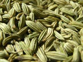Fennel Seed Whole - Organic