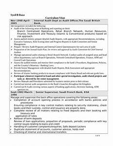 professional internal auditor resume template page 3 With internal resume format