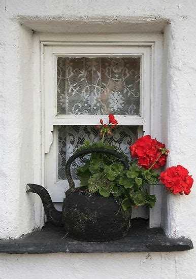 Window Seal Pots by Via Pin By Marisa Arce On Windows Geraniums