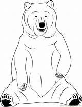 Bear Coloring Sitting Coloringpages101 Sloth Designlooter Printable Drawings 05kb 1053px sketch template
