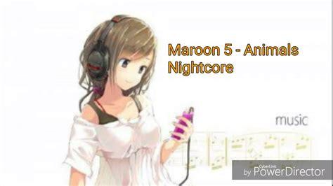 nightcore maroon  animals youtube