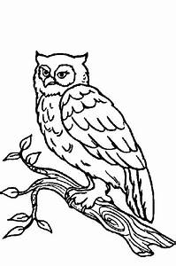 Free coloring pages of woodland animals