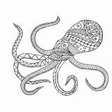 Squid Coloring Pages Giant Octopus Cuttlefish Diagram Drawing Labelled Printable Getdrawings Adults Getcolorings sketch template