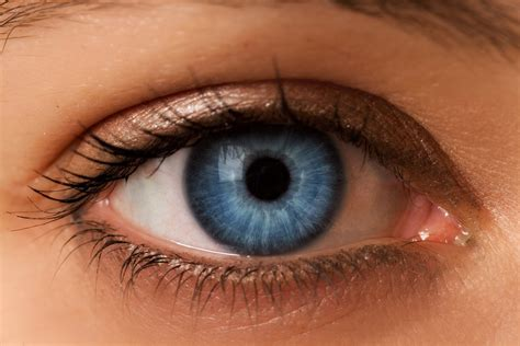 blue eyed individuals      alcoholics coincidence  evidence   alcoholic