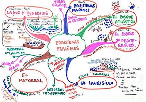 ecosistemas espa 241 oles mis esquemas y mapas mentales pinterest