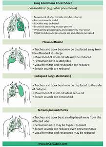 Examination Of Respiratory System Cheat Sheet
