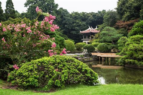 shinjuku gyoen national garden shinjuku gyoen national garden isetan and harajuku not