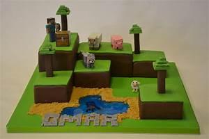 Minecraft Island Cake - Boys Birthday Cakes - Celebration