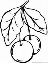 Cherry Coloring Clipart sketch template