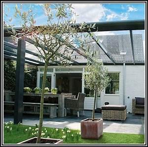 Terrassenuberdachung bausatz alu glas terrasse house for Terrassenüberdachung bausatz alu glas