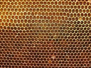 Крем лостерин отзывы при псориазе