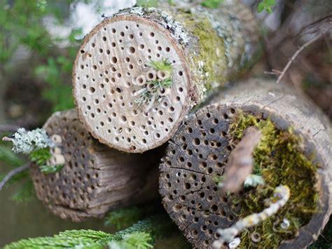 insektenhotel selber bauen mit kindern insektenhotel aus einem baumstamm selber bauen