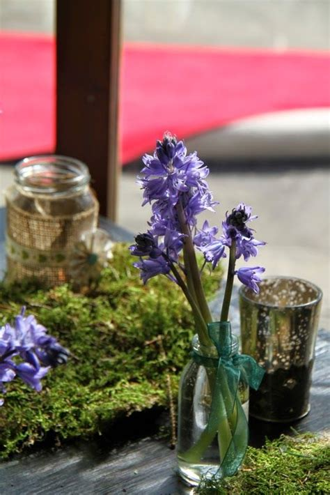 best about lord of the rings wedding redwood forest wedding wedding