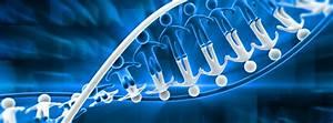 Why Dna Fragmentation Test Is Vital For Infertile Men