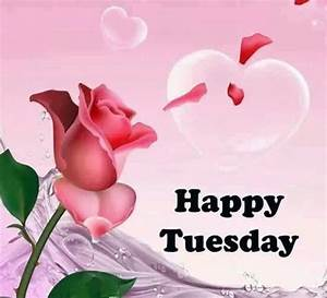 Happy Tuesday Rose And Heart Pictures, Photos, and Images