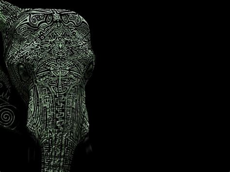 Tribal Animal Wallpaper - tribal elephant wallpaper elephants