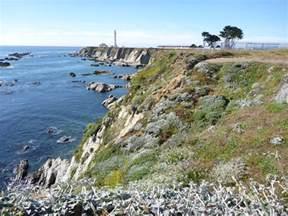 Botanizing the Point Arena-Stornetta Unit of California ...
