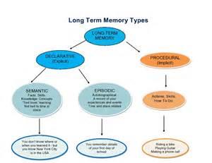 Long-Term Memory Types