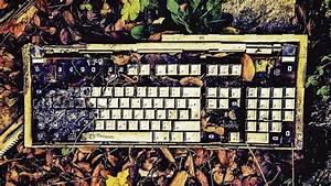 Wie Bekomme Ich Pflastersteine Sauber : wie bekomme ich meine tastatur wieder sauber ratgeber ~ Buech-reservation.com Haus und Dekorationen