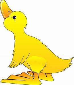 Young Duck Clip Art at Clker.com - vector clip art online ...