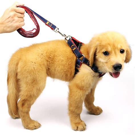dog leash harness collar pcs adjustable denim harness