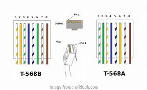 Cat 5 Wiring Diagram 568a Simple Cat 5 Wiring Diagram Wall
