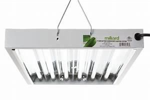 Milliard Ho T5 2 Feet 6 Bulb Fixture Review