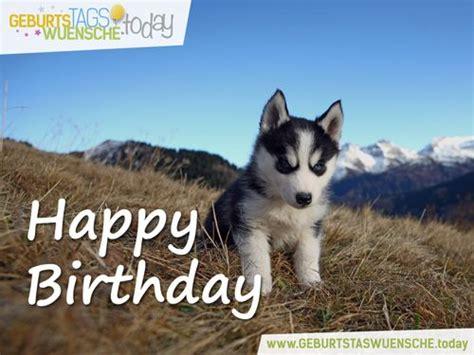 Happy Welpen Happy Birthday Geburtstagsgr 252 223 E Gl 252 Ckw 252 Nsche Zum