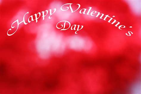 happy valentines day wallpaper  stock photo public