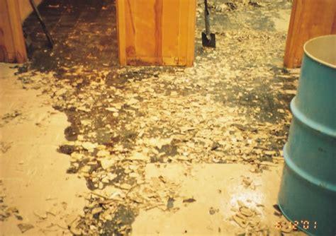 room  damaged floor tile