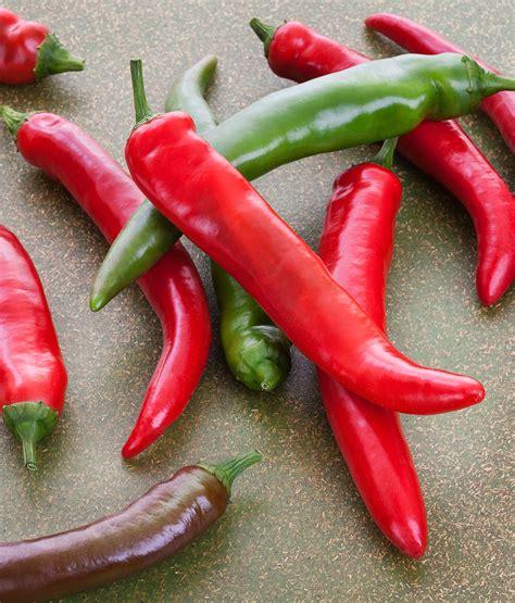 garden salsa hot pepper medium heat   salsa