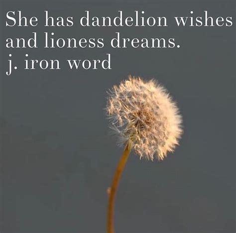 best 25 dandelion quotes ideas on