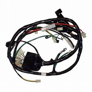Main Wire Harness For Sym Hd200
