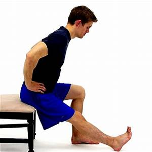 Seated Hamstring Stretch - Physical Therapy First ...