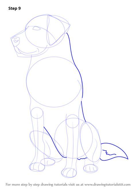 learn   draw  labrador farm animals step  step drawing tutorials