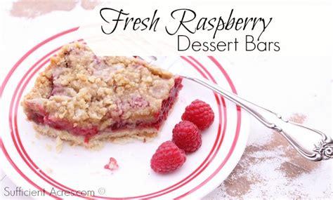desserts with fresh raspberries fresh raspberry dessert bars