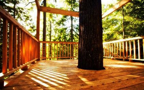tree perch  lookout deck ideas adding fun diy