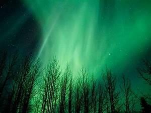 Aurora Borealis Tour At Viewing Lodge