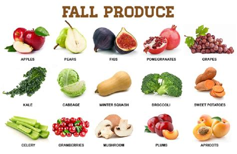 fall vegetables cooking with fall vegetables jovina cooks