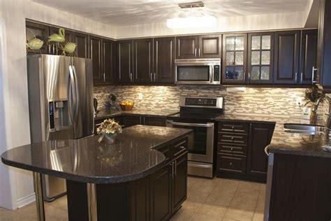 beautiful kitchen designs  black cabinets