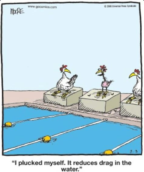 57 Best Images About Funny Pool Pics On Pinterest A
