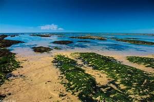 Le Select Les Sables D Olonne : camping proche des sables d 39 olonne et des plages bord de mer ~ Medecine-chirurgie-esthetiques.com Avis de Voitures
