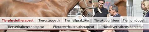 Physiotherapie Pferd Ausbildung